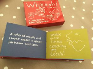 Review of Whoosh! by The Butterfly Mother
